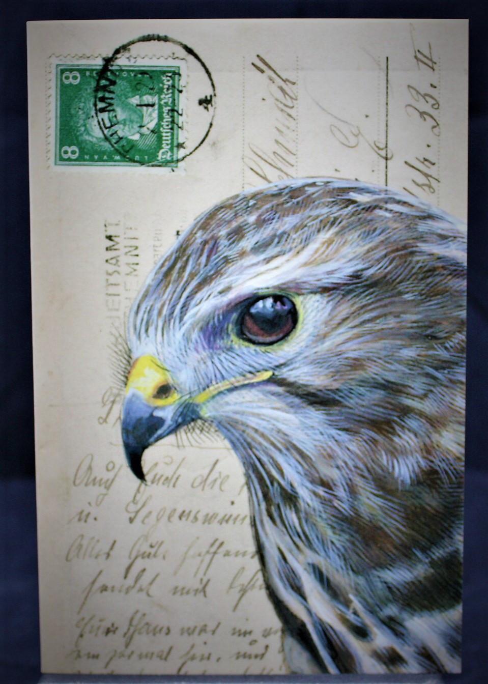 Klappkarte Falke mit Umschlag