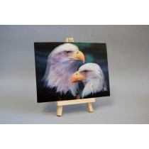 3D Postkarte mit Adlern