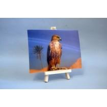 3D Postkarte mit Adler